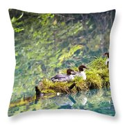 Grebe Podicipedidae Birds Sitting On A Throw Pillow by Richard Wear
