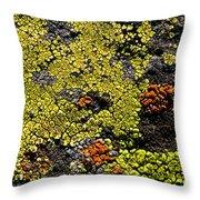 Green Algea Throw Pillow