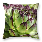 Green And Red Succulent Throw Pillow