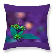 Green And Turquoise Throw Pillow