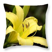 Green And Yellow - Lily Throw Pillow