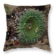 Green Anemone Throw Pillow