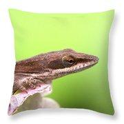 Green Anole - Lizzie Throw Pillow