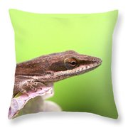 Green Anole In Pastels Throw Pillow