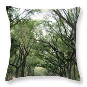 Green Arches  Throw Pillow
