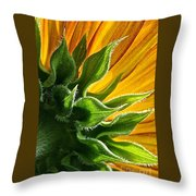 Green Backing Throw Pillow