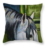 Green Barn Throw Pillow