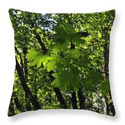 Green Canopy Throw Pillow
