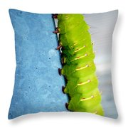 Green Caterpillar  Throw Pillow