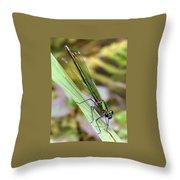 Green Damselfly Throw Pillow by Ramona Johnston