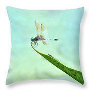 Green Dragonfly Waiting Throw Pillow