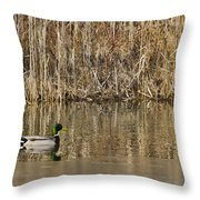 Green Drake Reflections Throw Pillow