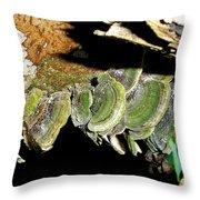 Green Fungi Throw Pillow