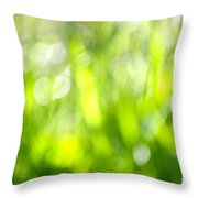 Green Grass In Sunshine Throw Pillow by Elena Elisseeva