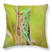 Green Grasshopper Throw Pillow