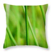 Green Green Grass Of Home Throw Pillow