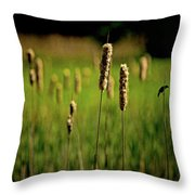 Green Grow The Rushes O Throw Pillow