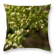 Green Helicid Bee 6 Throw Pillow