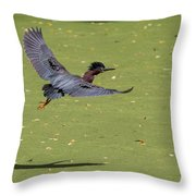 Green Heron In Flight Throw Pillow