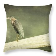 Green Heron On A Log Throw Pillow