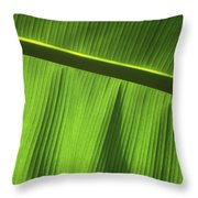 Green Leaf, Close-up Throw Pillow