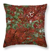 Green Leaves Against Red Leaves Throw Pillow