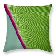 Green Leaves Series  7 Throw Pillow