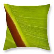 Green Leaves Series  8 Throw Pillow