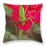 Green Lynx And Pray 8625 3375 Throw Pillow