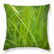 Green Prairie Grass Throw Pillow