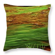 Green River Throw Pillow by Elena Elisseeva