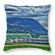 Green Roofed Barn-hdr Throw Pillow