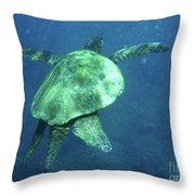 Green Sea Turtle 1 Throw Pillow