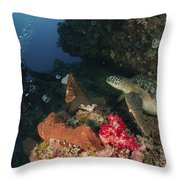 Green Sea Turtle And Underwater Throw Pillow