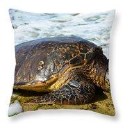 Green Sea Turtle Of Hawaii Throw Pillow