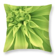 Green Sherbet Throw Pillow