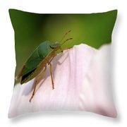 Green Shieldbug 2 Throw Pillow