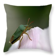 Green Shieldbug Throw Pillow