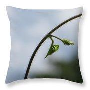 Green Span Throw Pillow