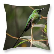 Green Tailed Trainbearer Throw Pillow