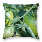 Green Tomato On The Vine Throw Pillow