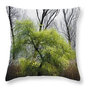 Green Tree And Pampas Grass Throw Pillow