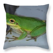 Green Tree Toad Throw Pillow