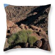 Green Tuft In Sandstone Throw Pillow