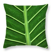 Green Veiny Leaf 1 Throw Pillow