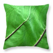 Green Veiny Leaf 2 Throw Pillow