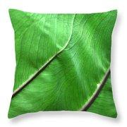 Green Veiny Leaf 2 Throw Pillow