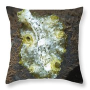 Green, White And Brown Flatworm, Bali Throw Pillow