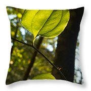 Greenbriar Leaf And Vine 1 Throw Pillow