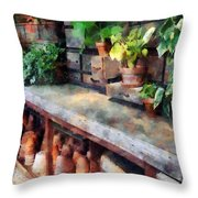 Greenhouse With Flowerpots Throw Pillow
